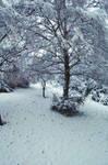 Snow was everyhere... by Azazel-Unborn