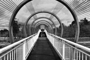 Crossing by Felizias