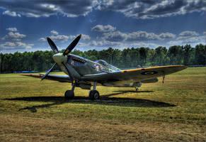 Spitfire by fiamen