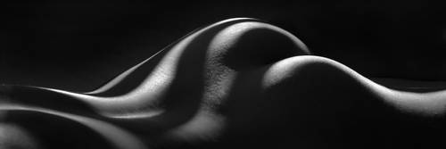 1220-SA Black and White Zebra Nude Woman Abstract by artonline