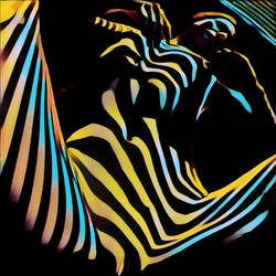 1149s-AK Zebra Woman Nude Abstract Composition by artonline