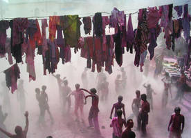 holli festival.india by regina-oups