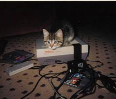 Nintendo Kitty by discruntled-paprika