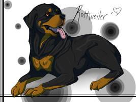 Rottweiler by AeroSocks