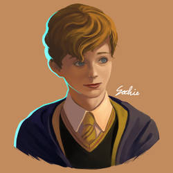 Young newt fantastic beast by sochie626