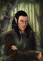 The Elf by delira