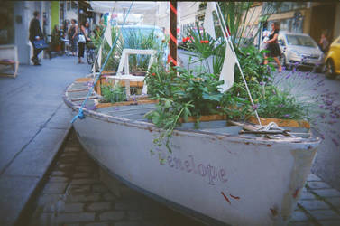 Wien in Holga 135BC: Penelope on the Street by neuroplasticcreative
