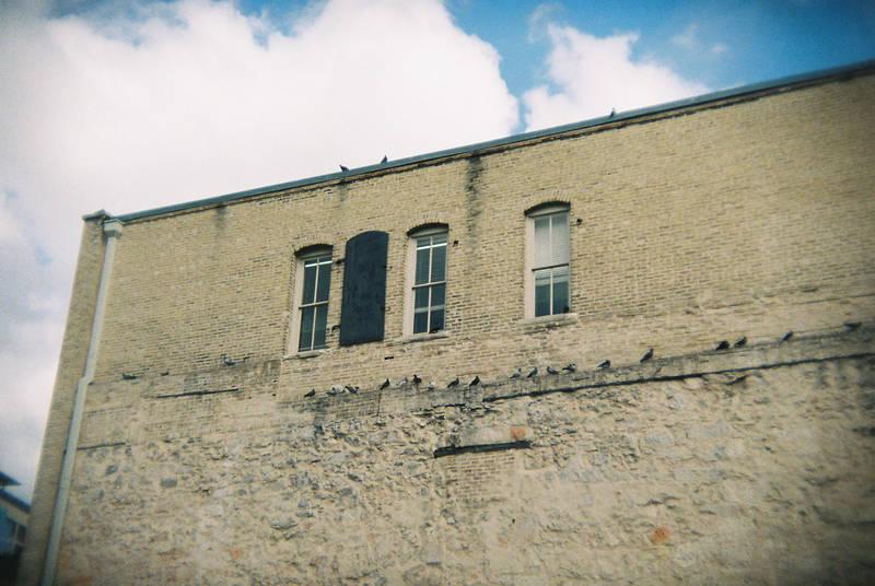 San Antonio in Holga 135BC: They Keep Watch by neuroplasticcreative