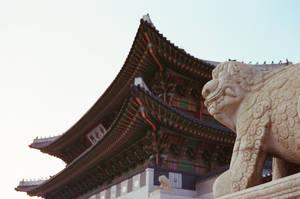 Gyeongbokgung Palace: Protector I by neuroplasticcreative