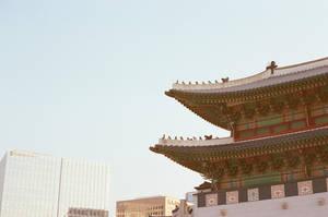 Gyeongbokgung Palace: Rooftop Guardians I by neuroplasticcreative
