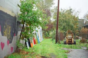Alberta in the Rain: Yard by neuroplasticcreative