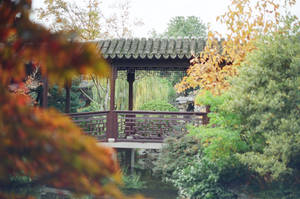 Lan Su: Meet me in Suzhou by neuroplasticcreative
