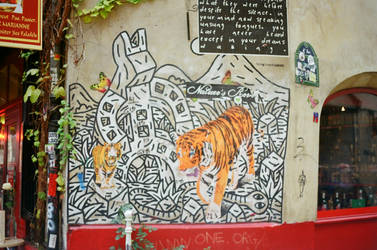 Paris Le Marais: Urban Tiger by neuroplasticcreative