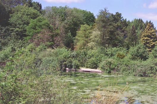 Prior Park Landscape Garden: Hidden, I by neuroplasticcreative