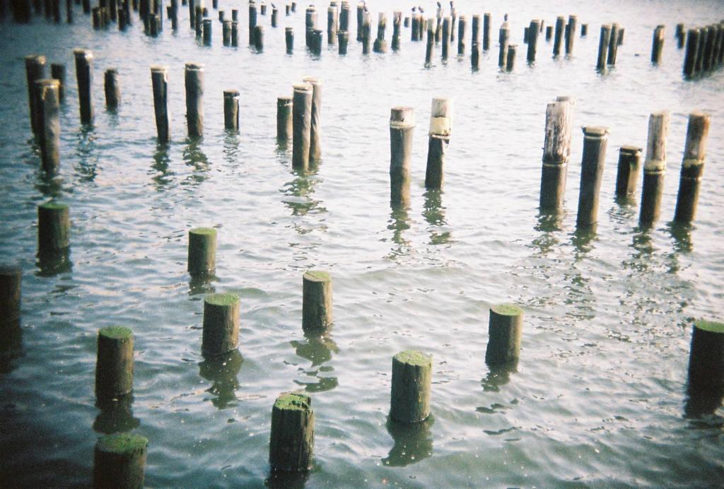 Brooklyn in Color: Sticks 'n' Stones, I by neuroplasticcreative