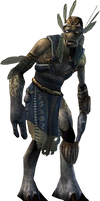 Raze's Hell - Shaman PNG Transparent by FrameRater