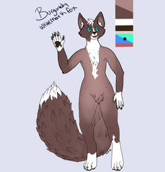 Burgundy whitemark fox adoptable by jennovazombie