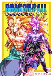 DB Doujinshi cover by turtlechan