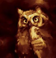 owls again by RedGraf