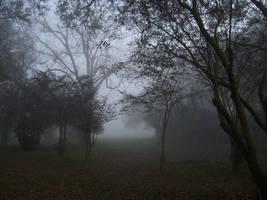 Fog Stock 3 by SilensTemplum