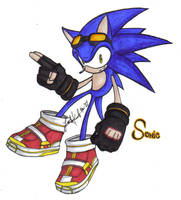 Sonic the Hedgehog by Tiggstar