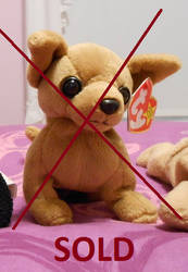 Ty Beanie Baby (Chihuahua) SOLD by Plushies-4-Sale on DeviantArt 08938009a67