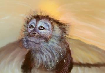 Monkey Bath Time by jewelsteel