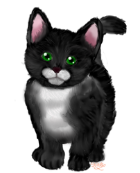 Render Cute Black Cat With Green Eyes By Shindapika On Deviantart