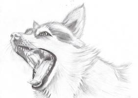 a dog by Kielx