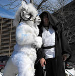 Tauntaun and Jedi by Zhon