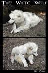 Princess Mononoke White Wolf by Zhon