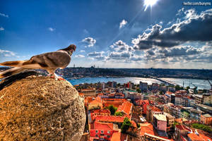Kus Bakisi Istanbul by bunyaminsalman