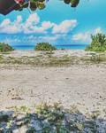 Mi Popa Montecristi Beach by oidoperfecto
