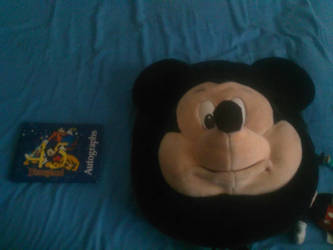 My Disneyland stuff by SimonTheLoud