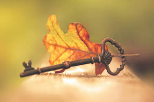 Autumn's Key by incolor16