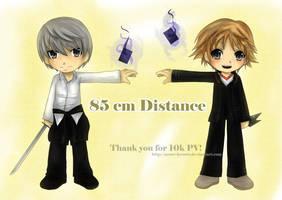 P4: 85 cm Distance by tsukkaomi