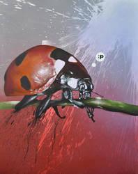 ladybug by scrawll