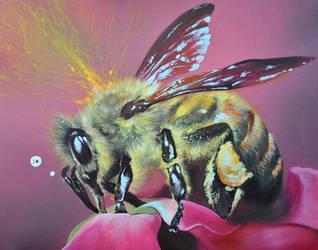 jolly bee by scrawll