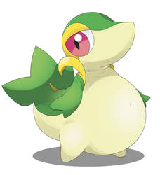 Fat Snivy by Sylveonlover12
