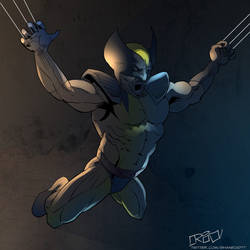 Wolverine Dive by shaneoid77
