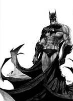 The Dark Knight by DarkKnightX5
