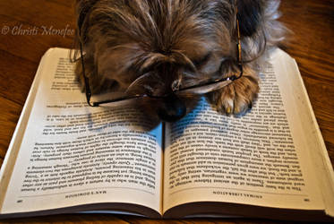 Hunter Reading by alk3girl666