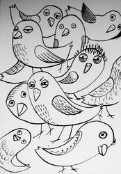 Many birds by pagone