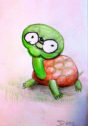 Old Tortoise by pagone
