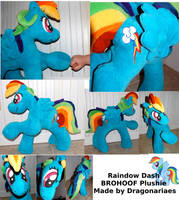Rainbow Dash Brohoof Plushie by dragonariaes