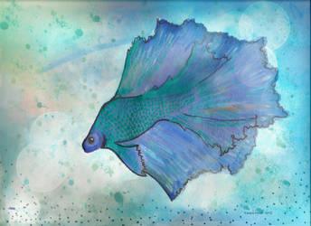 Betta fish by dragonariaes
