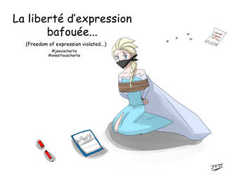 La liberte d'expression (Freedom of expression) by LordBlackTiger666