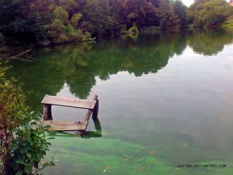 Pond comes to life by Kot1ka