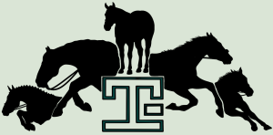 TimberLakeLaneEC's Profile Picture