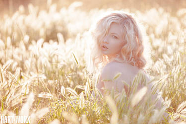 My Violetta II by Hart-Worx